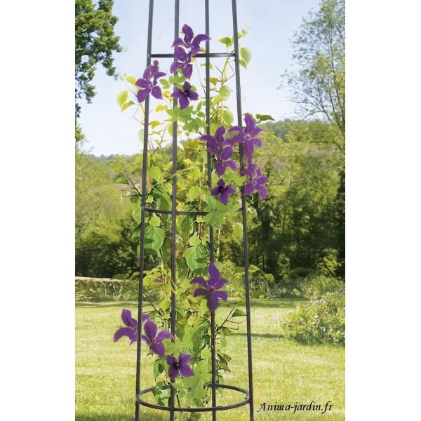 colonne m tal support plantes ob lisk d coration jardin. Black Bedroom Furniture Sets. Home Design Ideas