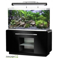 aquariums meuble bact ries pompe chauffage filtre aquariophilie anima jardin. Black Bedroom Furniture Sets. Home Design Ideas