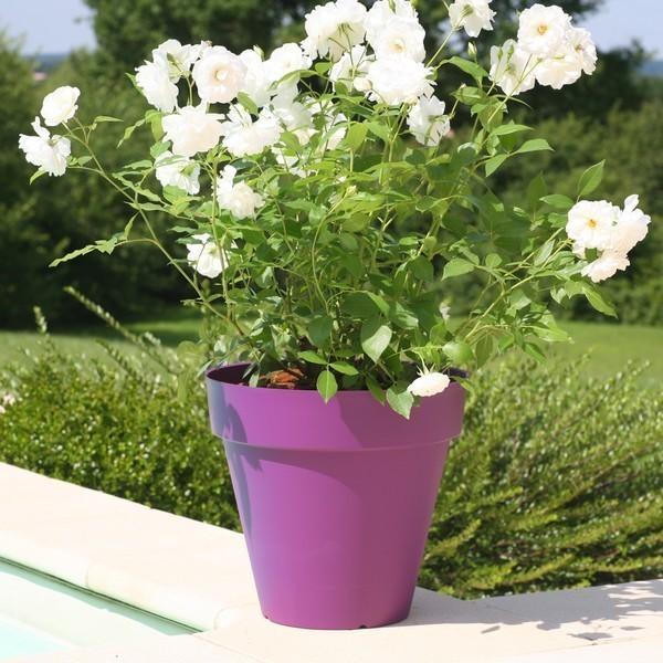 pot fleurs ext rieur terrasse soleilla 70cm riviera pas cher. Black Bedroom Furniture Sets. Home Design Ideas