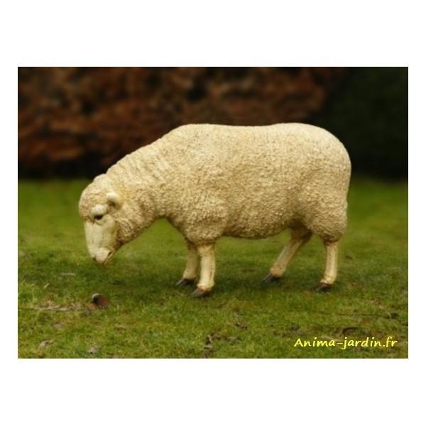 Mouton debout en r sine brebis t te basse animal de la for Jardin achat