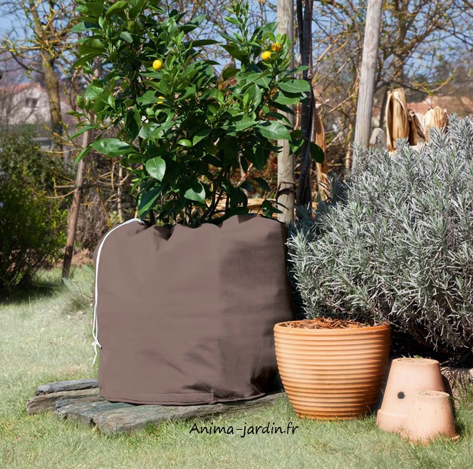 Housse protection pour pot plante contre le froid for Protection plante gel