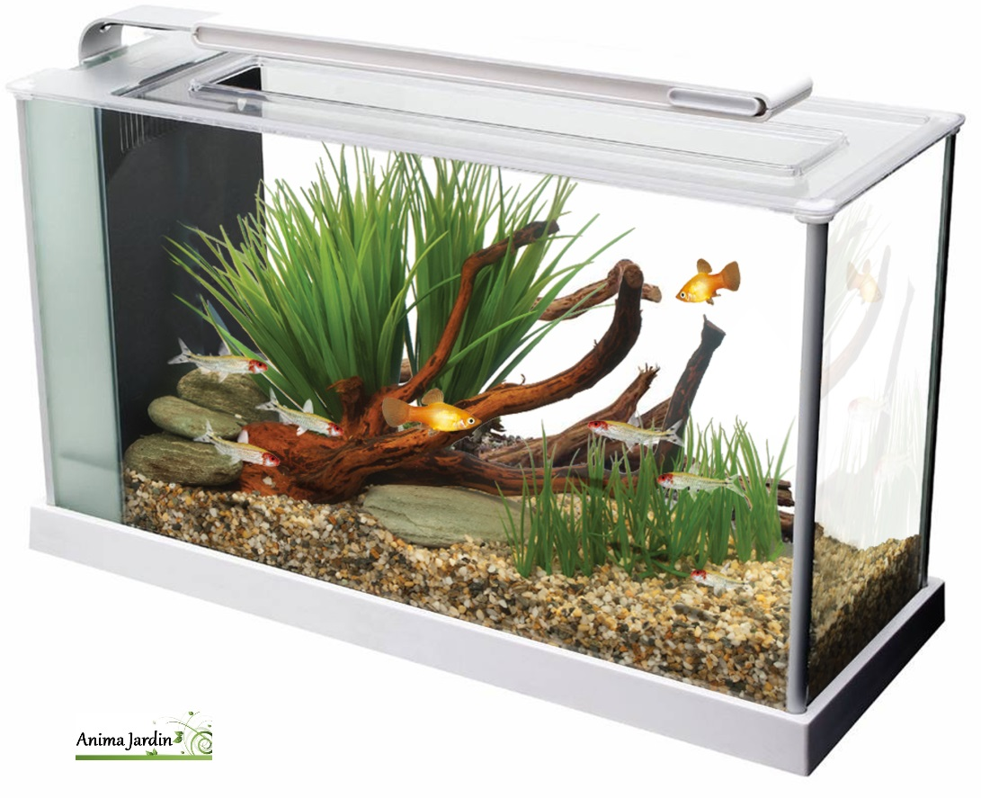ehrf rchtige aquarium table basse jardiland id es de conception de table basse. Black Bedroom Furniture Sets. Home Design Ideas