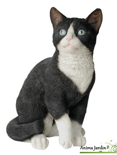 chat noir et blanc 30cm