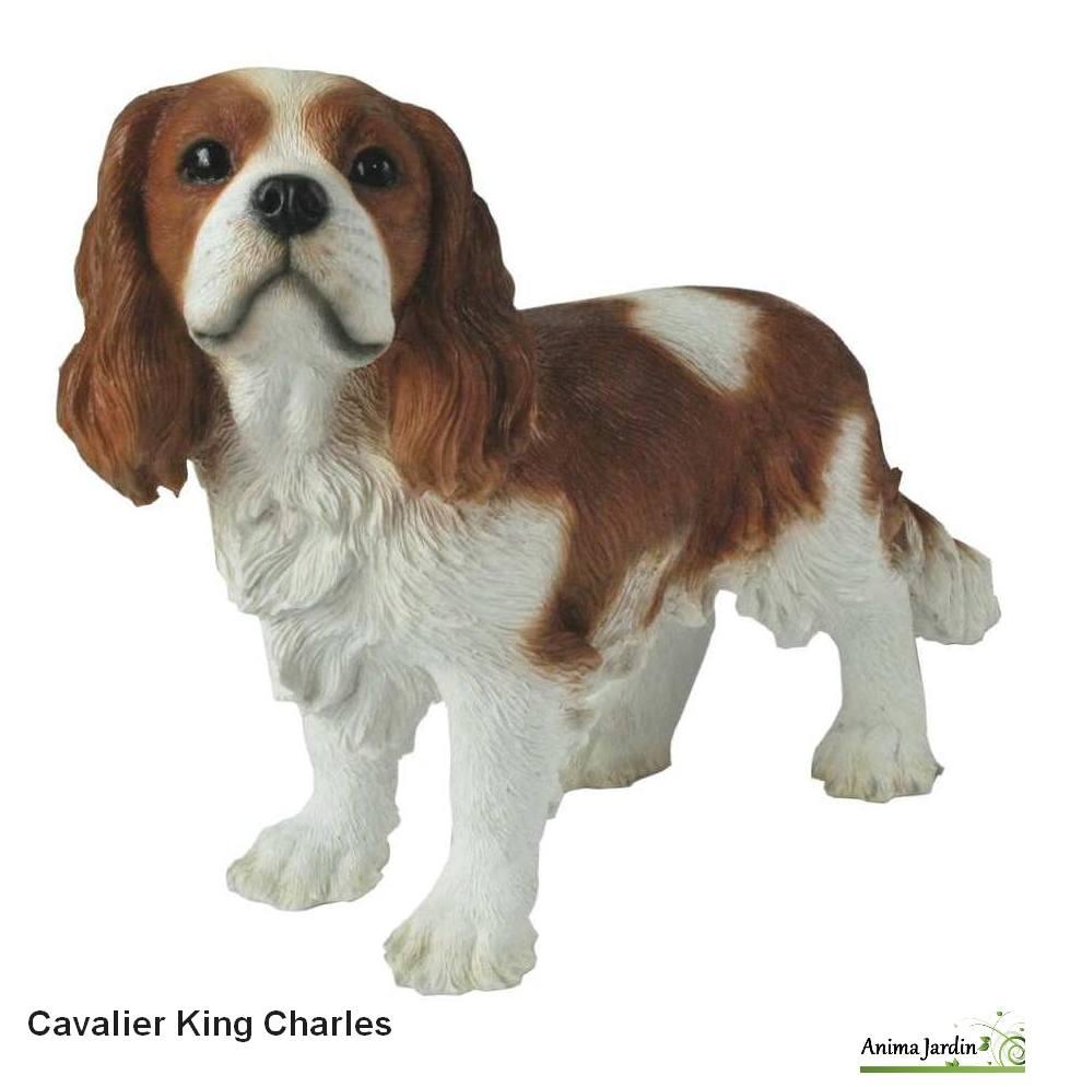 Chien Cavalier King Charles 43cm En R Sine Riviera Achat