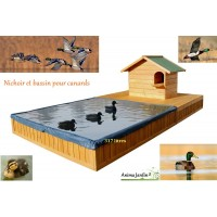 Abri pour canard, avec bassin spécial canard, maison canard, pas cher