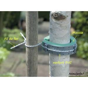 Collier mousse avec protection, lot de 5, attache solide pour arbre, nortène