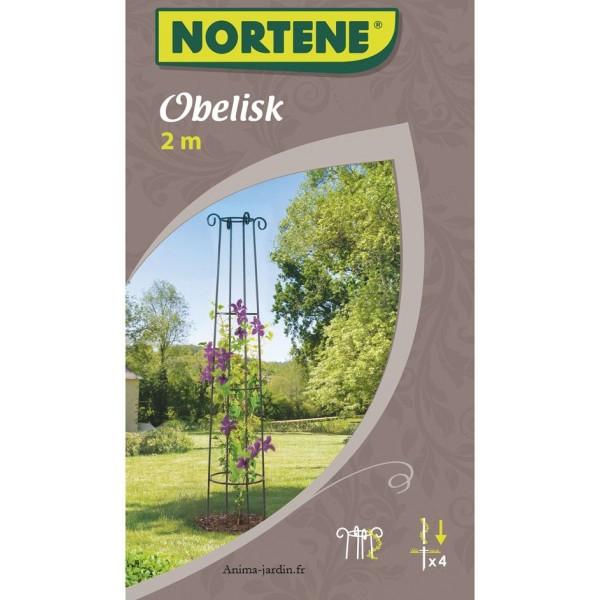 métal, support plantes, Obélisk, décoration jardin, Nortène, achat