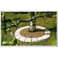 Pavé tour d'arbre en pierre reconstituée, bordure, béton préssé, achat