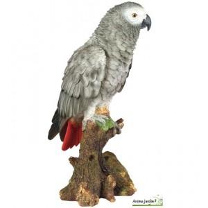 Perroquet Gris du gabon 38 cm en résine, Riviera, achat oiseaux