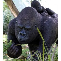 Gorille femelle en résine avec bébé, 114cm, animal sauvage, jungle