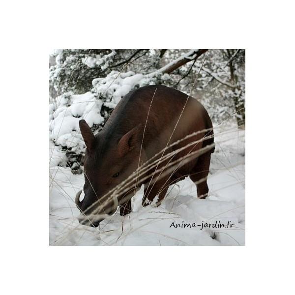 Sanglier en r sine cochon sauvage animal de la for t for Decoration achat