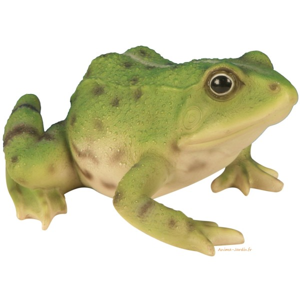 Grenouille verte en r sine lot de 2 riviera achat for Decoration jardin grenouille