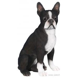Boston Terrier,  41 cm en résine, déco de jardin, Riviera, achat, chien, animal