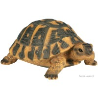 Tortue Hermann,  24 cm en résine, déco de jardin, Riviera, achat, réptile, animal