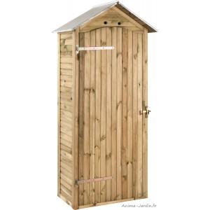 Armoire de rangement, bois autoclave, 0,33 m², petit abri de jardin, pas  cher, achat