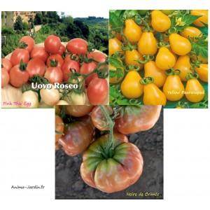 Tomate Noire de Crimée, pink Thai Egg, Yellow Pearshaped, potager jardin ouvrier, pas cher