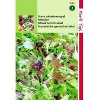 Graines de Salade Mesclun, mélange de salades, achat, vente, pas cher
