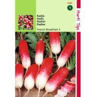Graines de radis Flamboyant, demi-long, ferme, achat, vente, pas cher