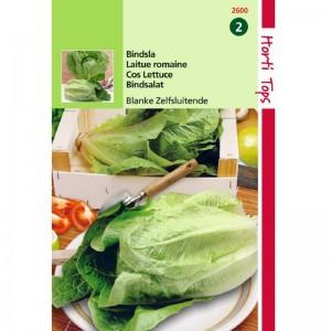 Graines de salade Laitue Romaine Blonde Maraîchère, achat, vente, pas cher