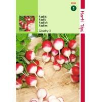Graines de radis Gaudry, radis rond, graines potagères, achat, vente, pas cher