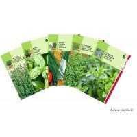 Lot de graines AROMATIQUES, 5 variétés, achat, vente, pas cher