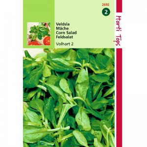 Graines de mâche verte à cœur plein, graines potagères, achat, vente, pas cher