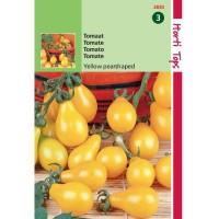 Graines de tomates Yellow Pearshaped, tomates jaunes, poires, graines potagères, achat, vente, pas cher