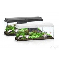 Aquarium, kit Aquadream 100, capacité 100L, inclus éclairage et filtre, Aquatlantis, achat, pas cher