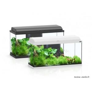 Aquarium, kit Aquadream 80, capacité 79L, inclus éclairage et filtre, Aquatlantis, achat, pas cher