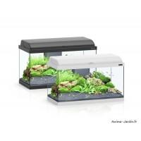 Aquarium, kit Aquadream 60, capacité 52L, inclus éclairage et filtre, Aquatlantis, achat, pas cher