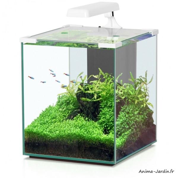Aquarium Avec Meuble Pas Cher