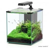 Aquarium, Nano Cubic 30, inclus éclairage et filtre, Aquatlantis, achat, pas cher