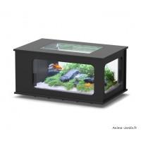 Aquarium, Aquatable, 100 x 63 cm, capacité 177L, inclus éclairage et filtre, Aquatlantis, achat, pas cher