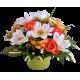 Coupe Anémone, Renoncule & Alstromeria, H.30 cm, composition de fleurs, toussaint, rameaux, tergal, achat, pas cher