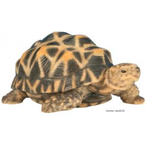Tortue étoilée, bébé tortue, 14cm en résine, déco de jardin, animal, reptile, riviera, achat