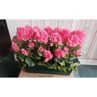 Jardinière de Géraniums artificiels, 40 cm, piquet fleuri, fleur artificielle, zonal double, déco jardin, pas cher
