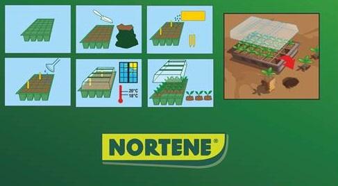 kit-planting-2