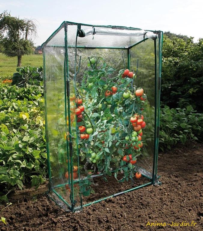 Serre à tomates-protection froid et pluie-serre de jardin-potager-Nature-Jardin-Anima-Jardin.fr