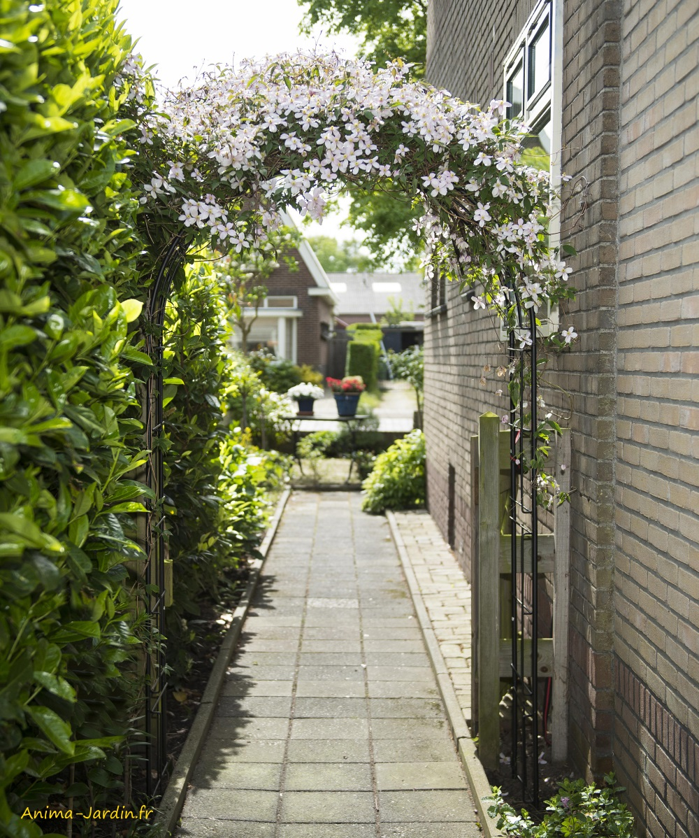 arche en acier-décoration du jardin-pergola-allée-rosier-Nature Jardin-Anima-Jardin.fr