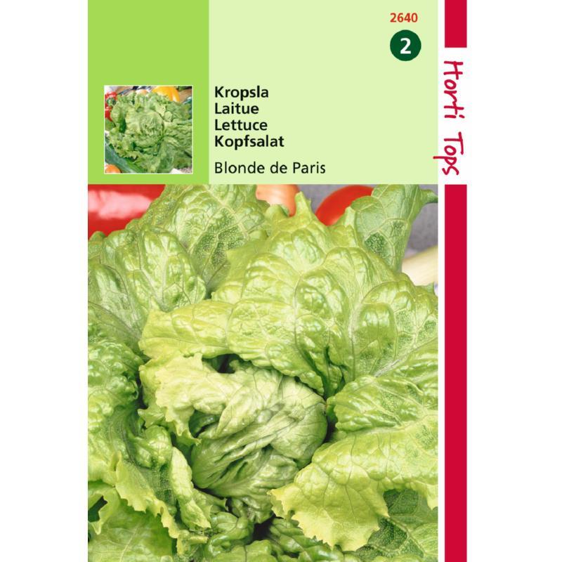 Graines de salade-laitue Blonde de paris-graines potagères-Hortitops-Anima-Jardin.fr