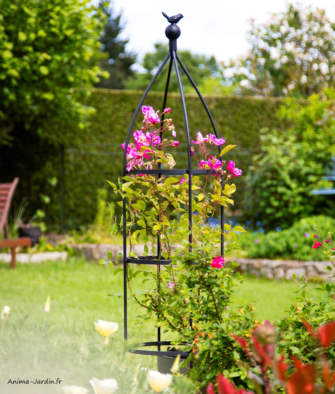 Obélisque-Birdy Obelisk-métal-plantes grimpantes-tuteur-Nortène-Anima-Jardin.fr