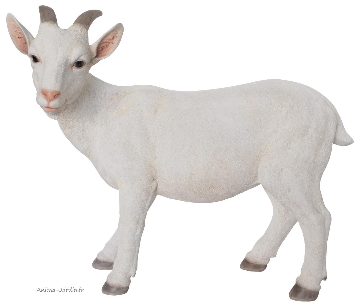 chèvre-blanche-résine-déco-jardin-anima-jardin.fr