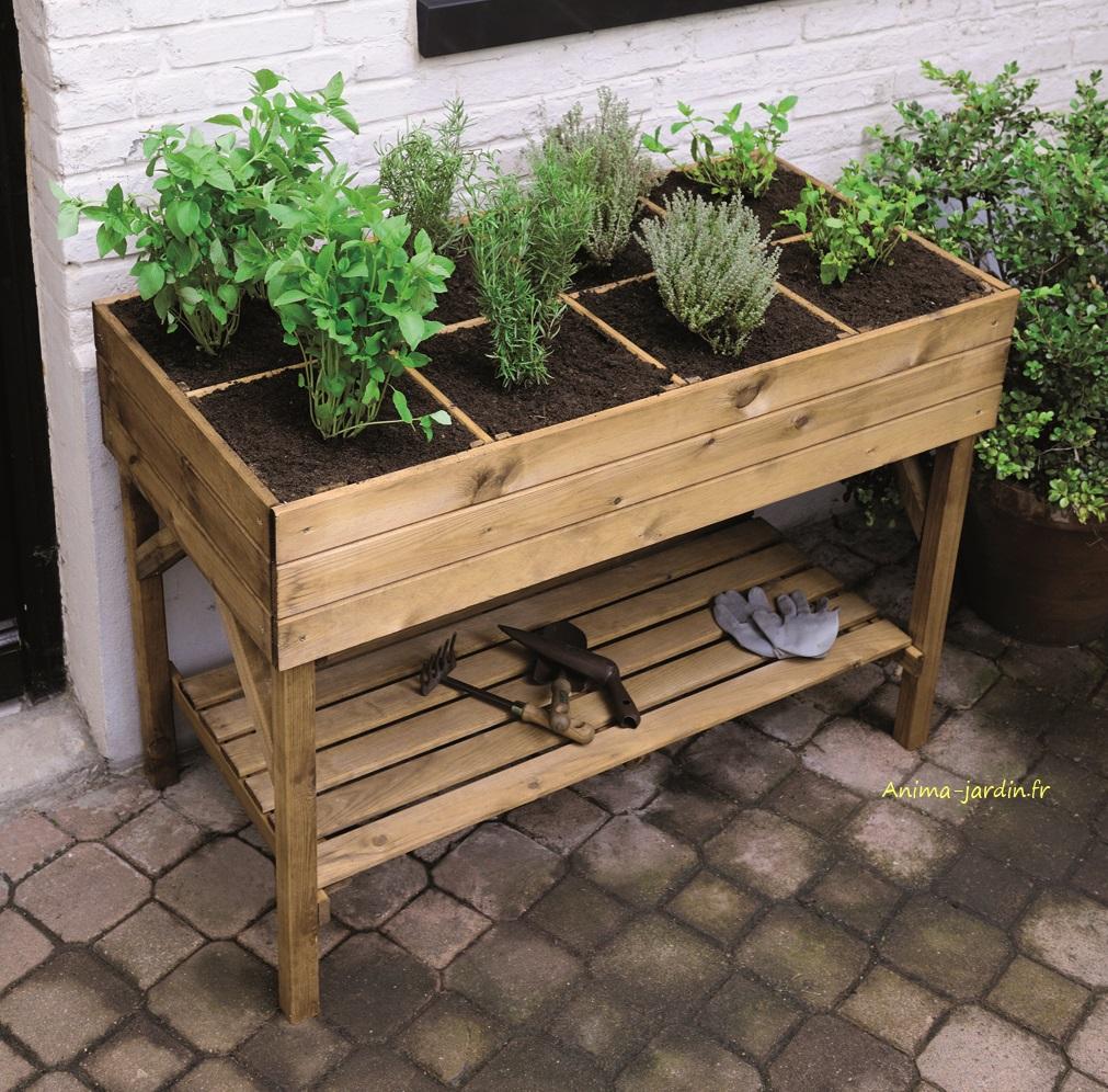 Carré-jardin-gariguette-anima-jardin-planté