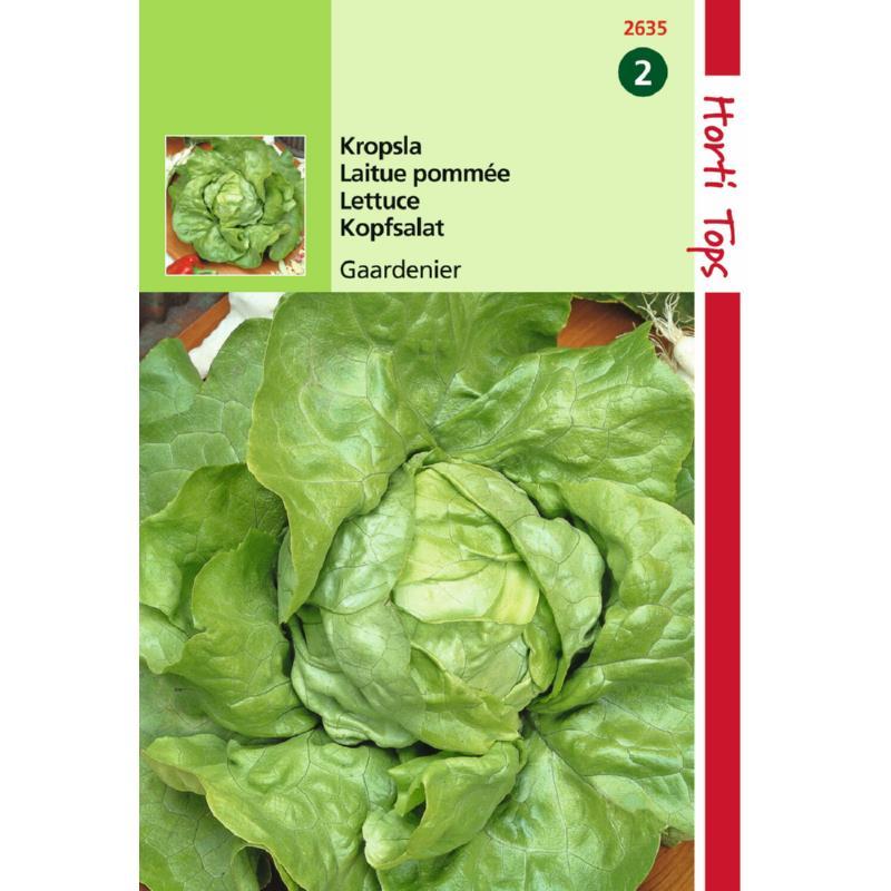 Graines de salade-laitue pommée du bon jardinier-précoce-Hortitops-Anima-Jardin.fr