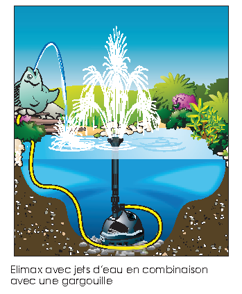 Elimax-comme-pompe-et-jets-d-eau-Gargouille