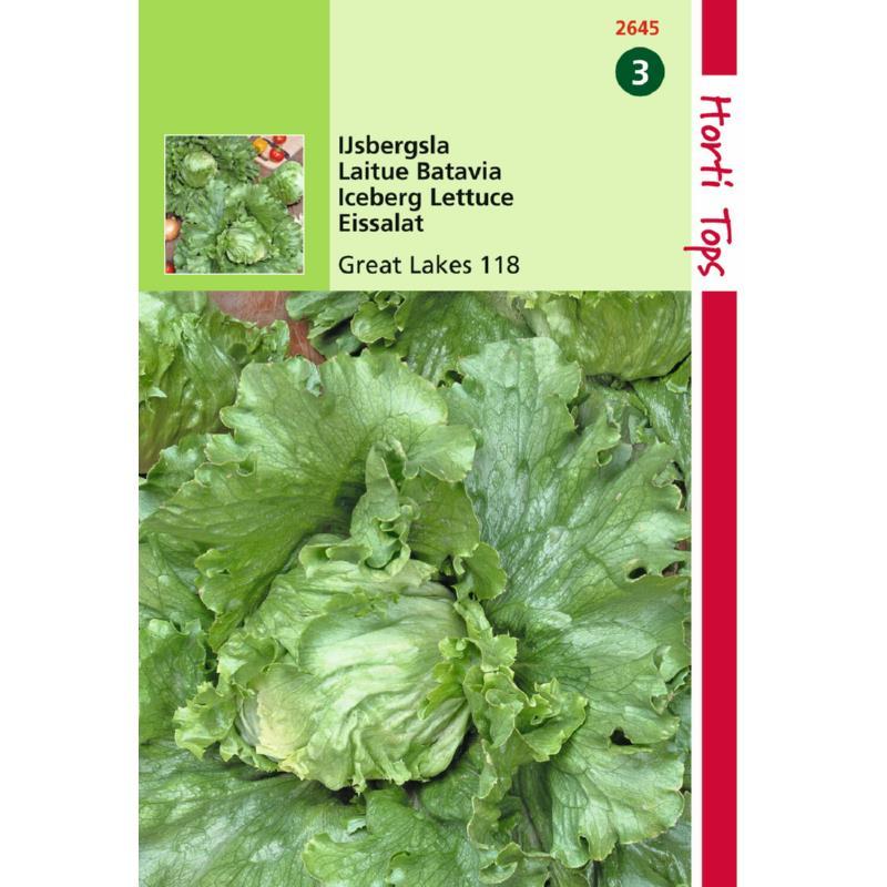 Graine de salade Batavia Reine des Glaces-Hortitops-Anima-Jardin.fr