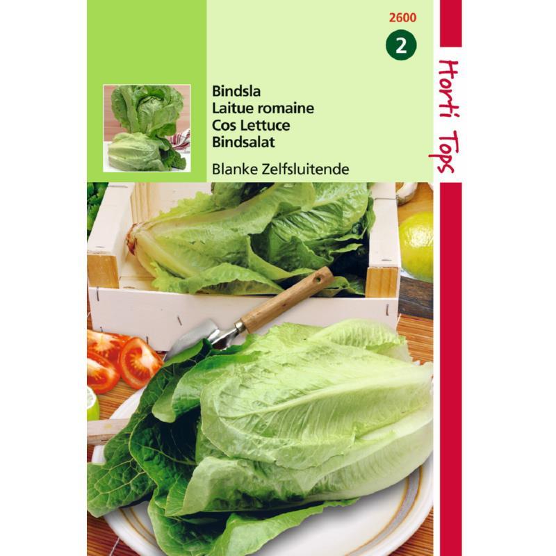 Graine de salade-laitue Romaine Blonde Maraîchère-Hortitops-Anima-Jardin.fr