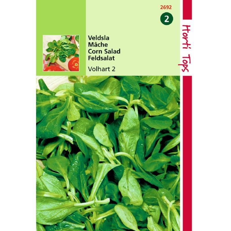 Graines de mâche verte à coeur plein-graines potagères-Hortitops-Anima-Jardin.fr