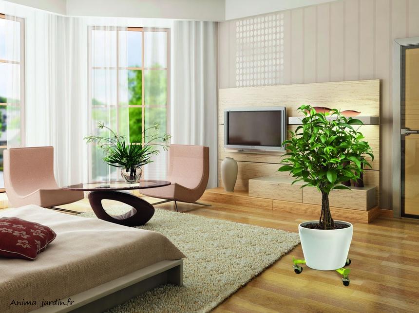 roule-bac-plateau-a-roulettes-support-plantes-flora-roll-nortene-anima-jardin