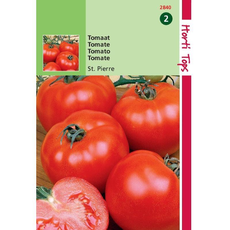 Tomate Saint Pierre-sachet de graînes-Gros fruit rond-Tuinplus-Anima-Jardin.fr